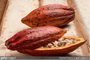 Le chocolat à travers les siècles